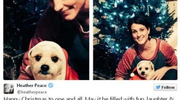 La cantante y actriz ha posado este año junto a su mascota y el árbol navideño...