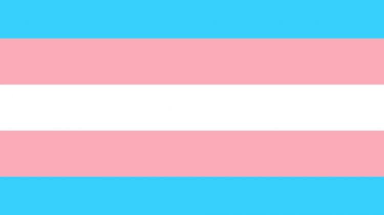 Lesbiana.es-Autobús-transfobia