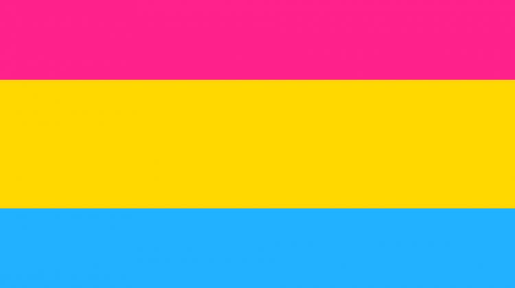 Lesbiana.es - Pansexualidad explicada para abuelas