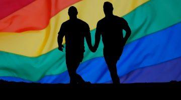 Lesbiana.es - No soy gay, soy andrófilo