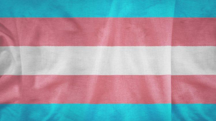 La primera transexual en los Óscar